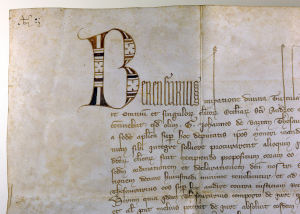 Detail of the opening of a charter issued by Berengarius, with photography © Mildred Budny
