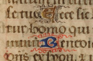 Detail of Recto of the leaf from a tiny Book of Hours, with 2 1-line in-line initials respectively in Gold or Blue pigment with pen-flourishes respectively of purple or red pigment. Photography © Mildred Budny