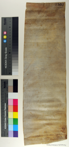 Italian notarial roll, dorse unrolled. Photography © Mildred Budny
