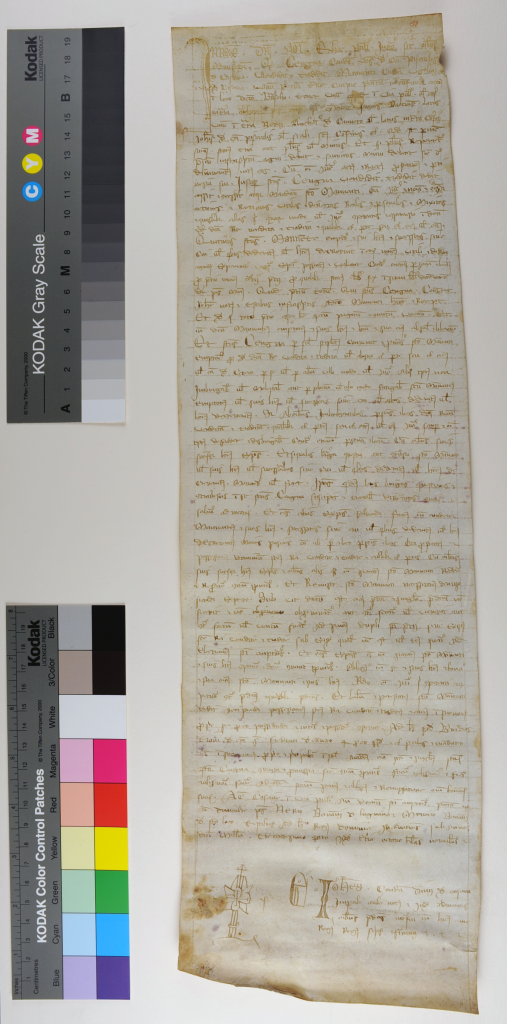 Italian notarial roll number 1305, face unrolled. Photography © Mildred Budny