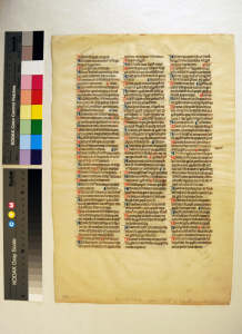 Recto of Leaf from the A-Group of the 'Interpretation of Hebrew Names' in 'Ege Manuscript 14'. Photography by Mildred Budny