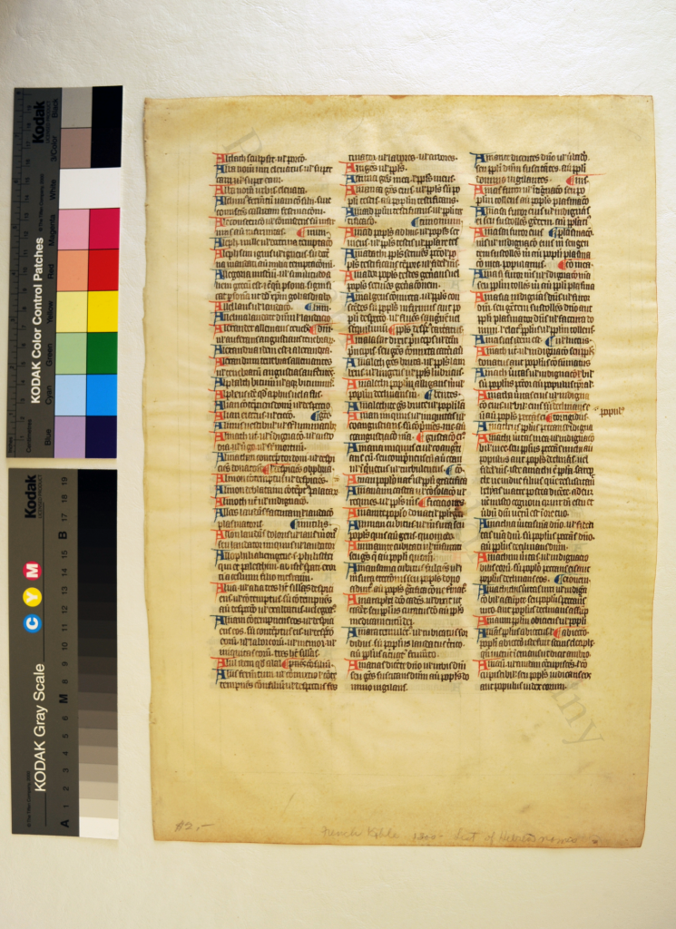 Private Collection, Leaf from Ege MS 14, with part of the A-Group of the 'Interpretation of Hebrew Names'. Photograph by Mildred Budny.