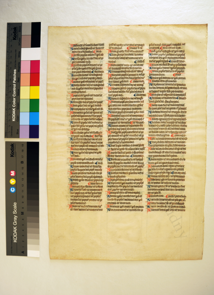 Verso of Leaf from the A-Group of the 'Interpretation of Hebrew Names' in 'Ege Manuscript 14'. Photography by Mildred Budny