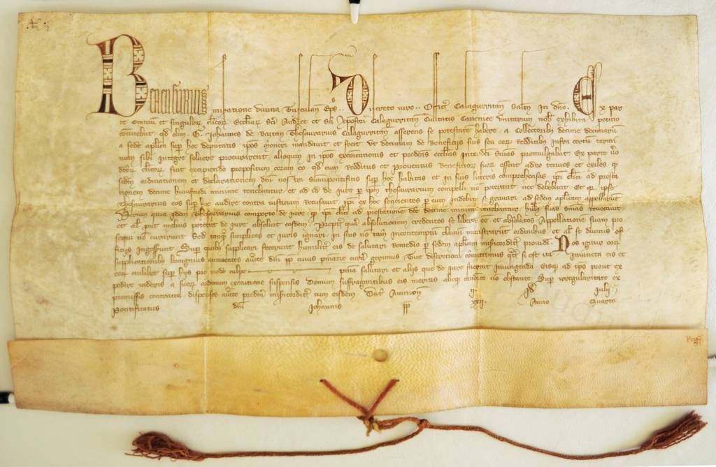 Document of Pope John XXII for Berengarius, unfolded. Photography by Mildred Budny