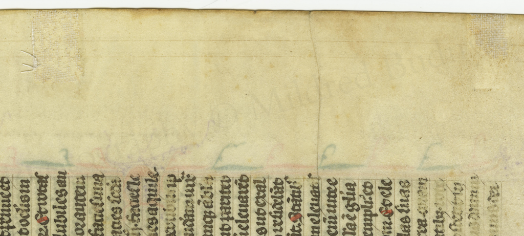 Traces of Ege-style mounting tape at the outer edge of the Ezekiel Leaf from 'Ege Manuscript 61'. Photography by Mildred Budny