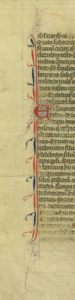 The decorated vertical bar for the Chapter Initial on the verso of the Ezekiel Leaf of 'Ege Manuscript 61'. Photography by Mildred Budny