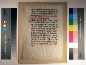 Verso of Folio 4 from a Missal. Photography © Mildred Budny