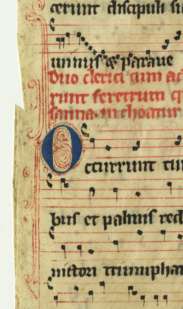 Initial O for 'Occurrunt' on the recto of the Processional leaf. Photography by Mildred Budny