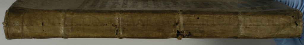 End View of the Spine of the Notebook with 'Recettes' reusing a 13th-century manuscript from a Psalter or Breviary. The Spine view shows the original stitching line and the spine of the medieval bifolium. Photograph © Mildred Budny.