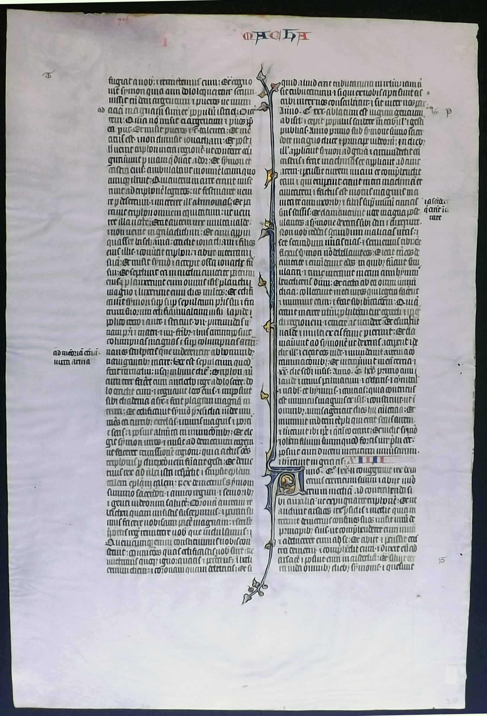 Verso of Rogue Leaf from Ege Manuscript 14 at Kent State University. Reproduced by permission