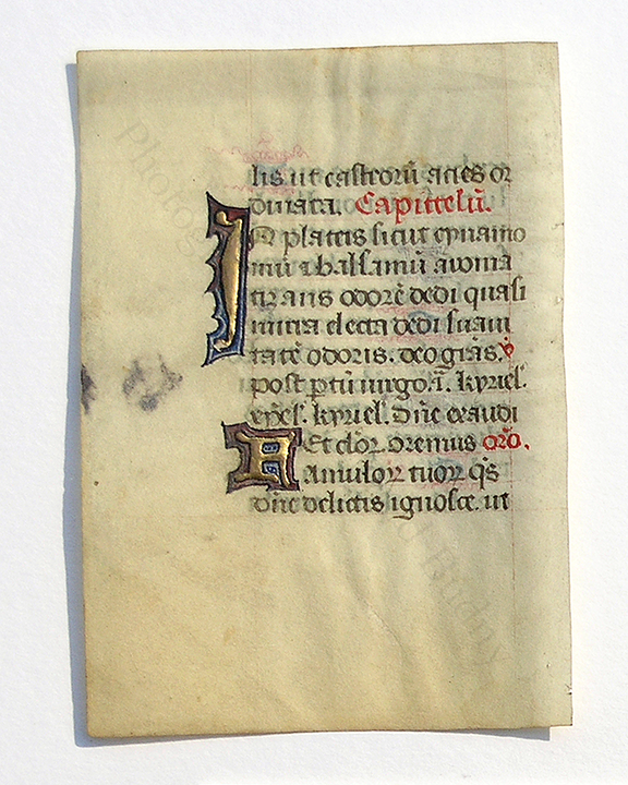 Recto of leaf from a tiny 12-line Book of Hours, with 2 polychrome opening initials in gold leaf and other pigments Budny Handlist 11. Photograph © Mildred Budny