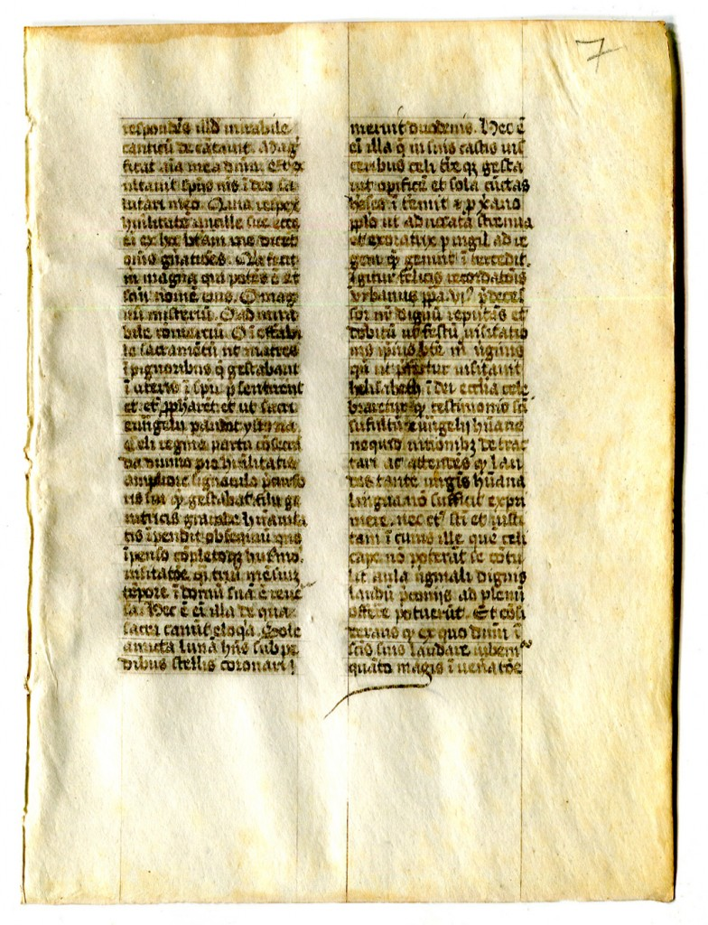 Folio 7 recto, with a portion from a text as yet unidentified. Reproduced by permission.