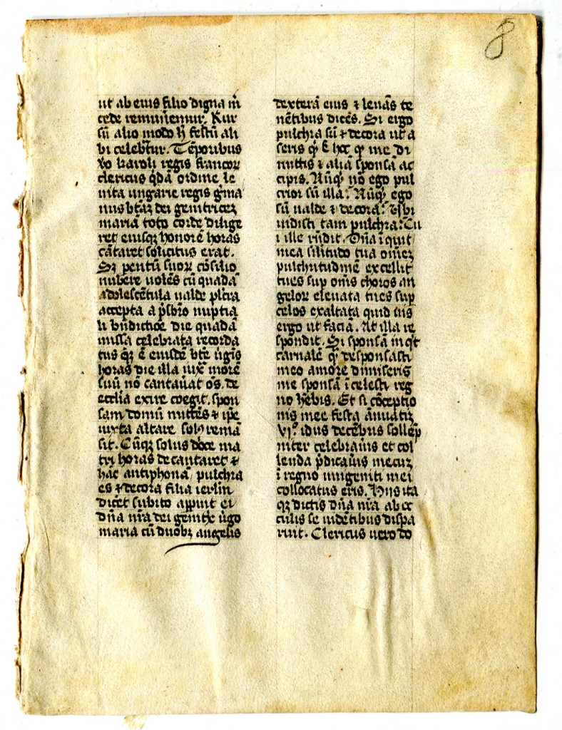 Folio 8r with the headless third text. Reproduced by permission.
