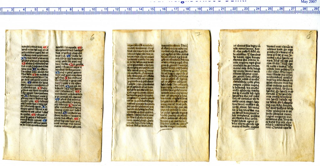 The rectos of Folios '6', '7', and '8' from a dismembered religious handbook. These leaves are non-consecutive, as their texts show. Reproduced by permission.