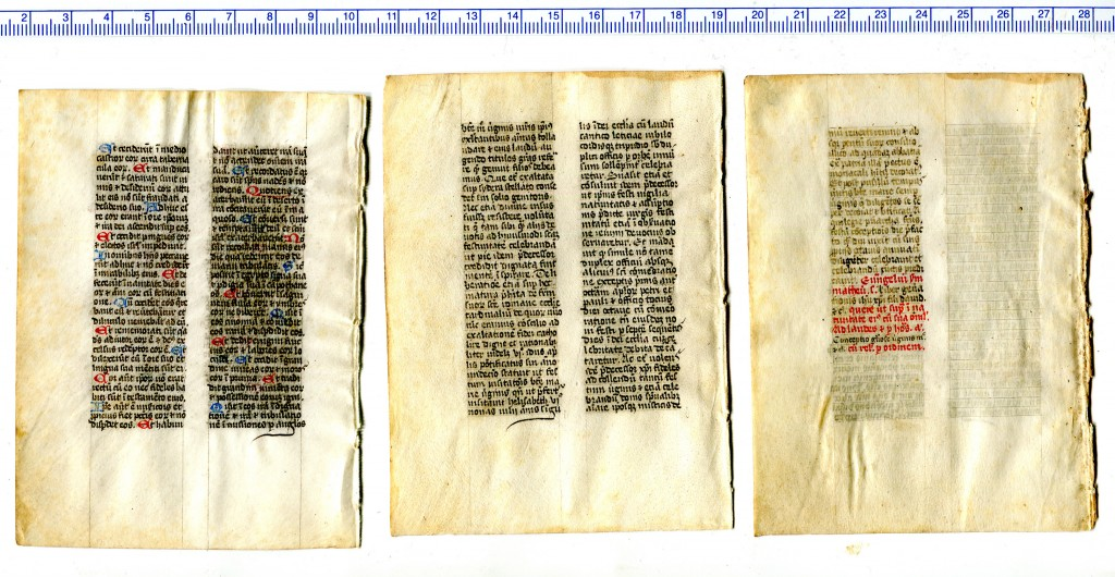 The versos of Folios '6', '7', and '8' from a dismembered religious handbook. These leaves are non-consecutive, as their texts show. Reproduced by permission.