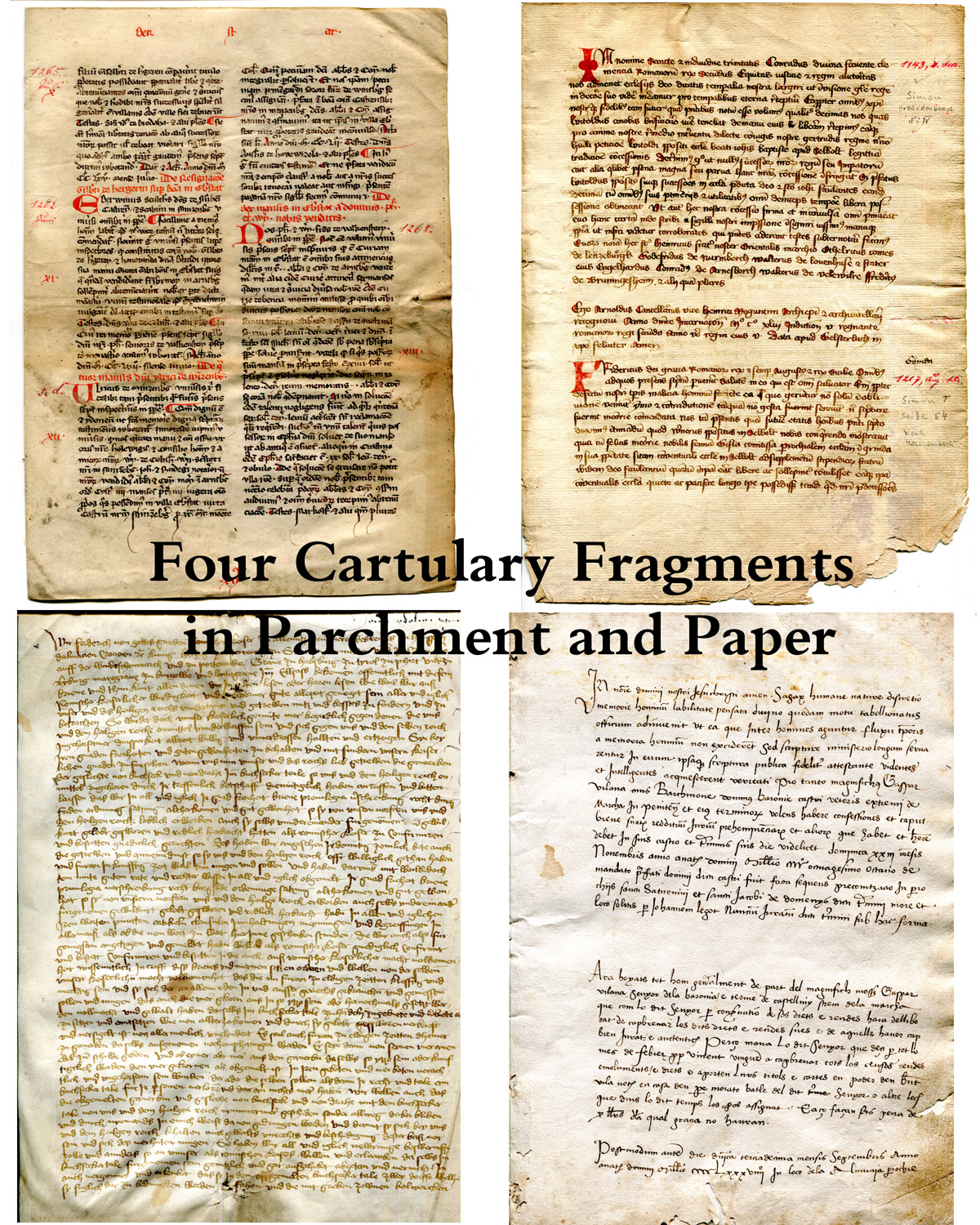 Title Page for the Paper by David Sorenson in the Session Sponsored by the Research Group on Manuscript Evidence at the International Congress on Medieval Studies in May 2016. The images represent pages in Cartularies respectively from from Arnsberg, Selbold, Buchsechertal, and Vallfort, in the order presented in the paper. Reproduced by permission.