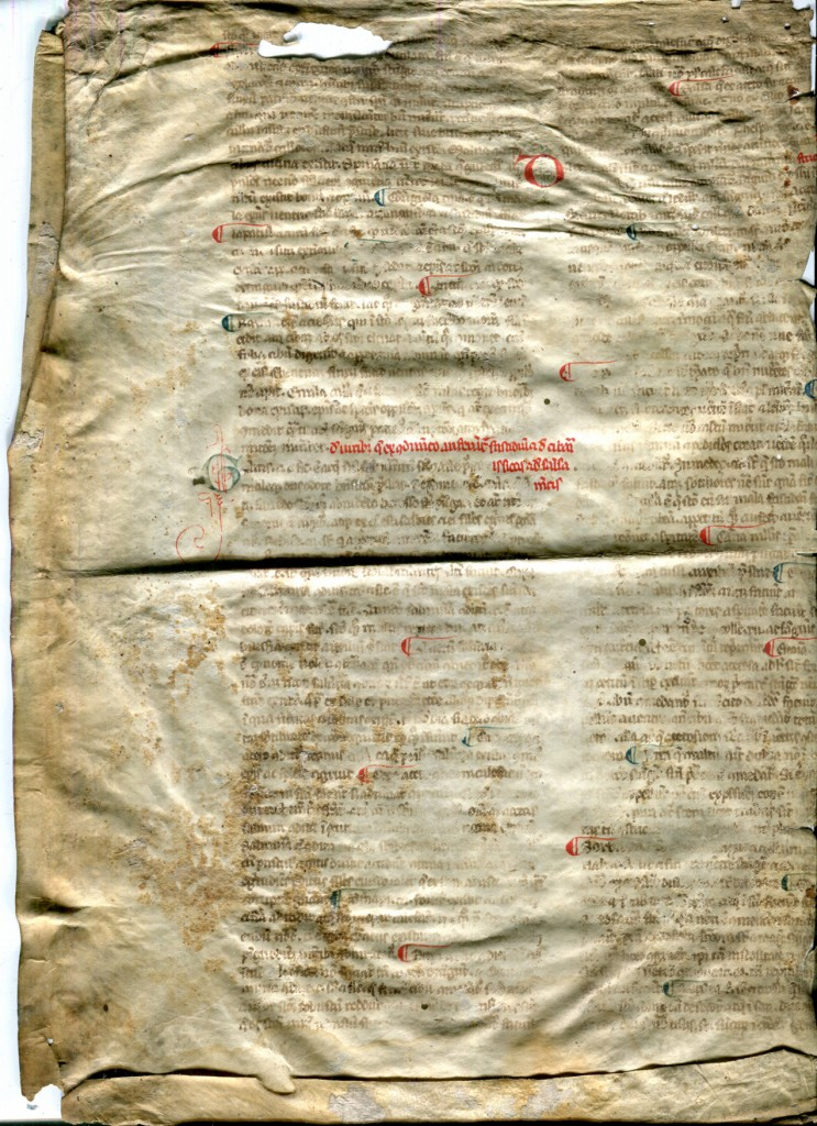 Legible Verso of Reused Bifolium from a 13th-century Latin treatise on medical substances. Reproduced by permission.