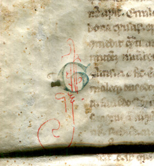 Detail of Initial G on the Legible Verso of Reused Bifolium from a 13th-century Latin treatise on medical substances. Reproduced by permission.