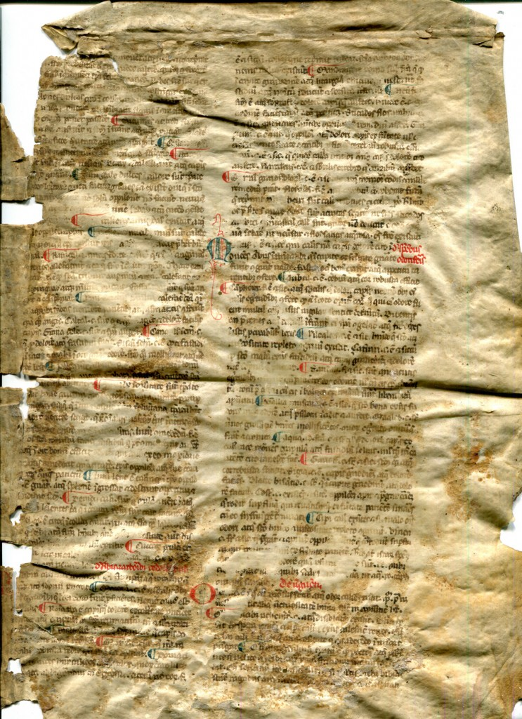 Legible Recto of Reused Bifolium from a 13th-century Latin treatise on medical substances. Reproduced by permission.