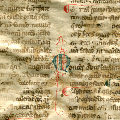 Detail of initial M in the intercolumn of the Legible Recto of Reused Bifolium from a 13th-century Latin treatise on medical substances. Reproduced by permission.