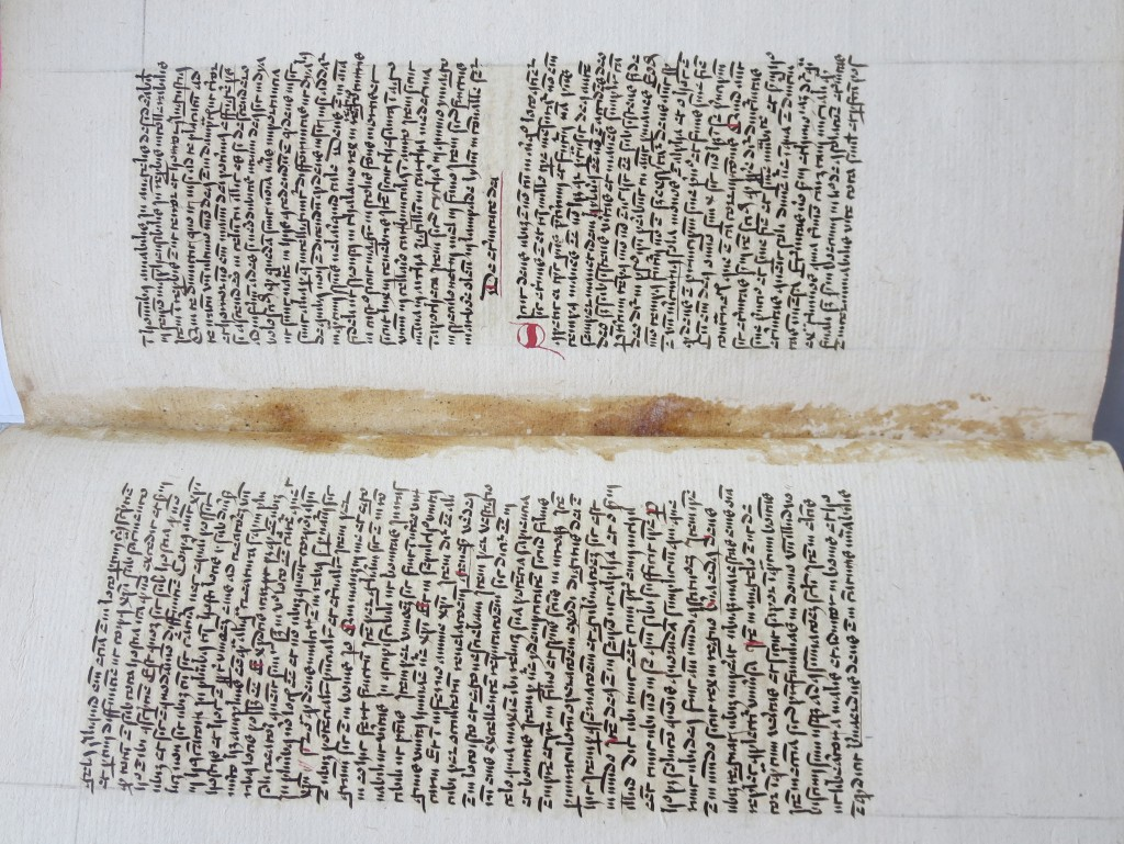 Paste stains between folios 7v - 8r in Quire 1 of Albertus Magnus text in Le Parc Abbey Volume. Photography © Mildred Budny