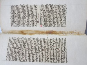 Past stains between folios 7v - 8r in Quire 1 of Albertus Magnus text in Le Parc Abbey Volume. Photography © Mildred Budny