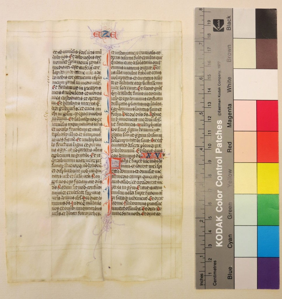 IMG_3109 UPenn Ege MS 61 Leaf Recto with Color Guide