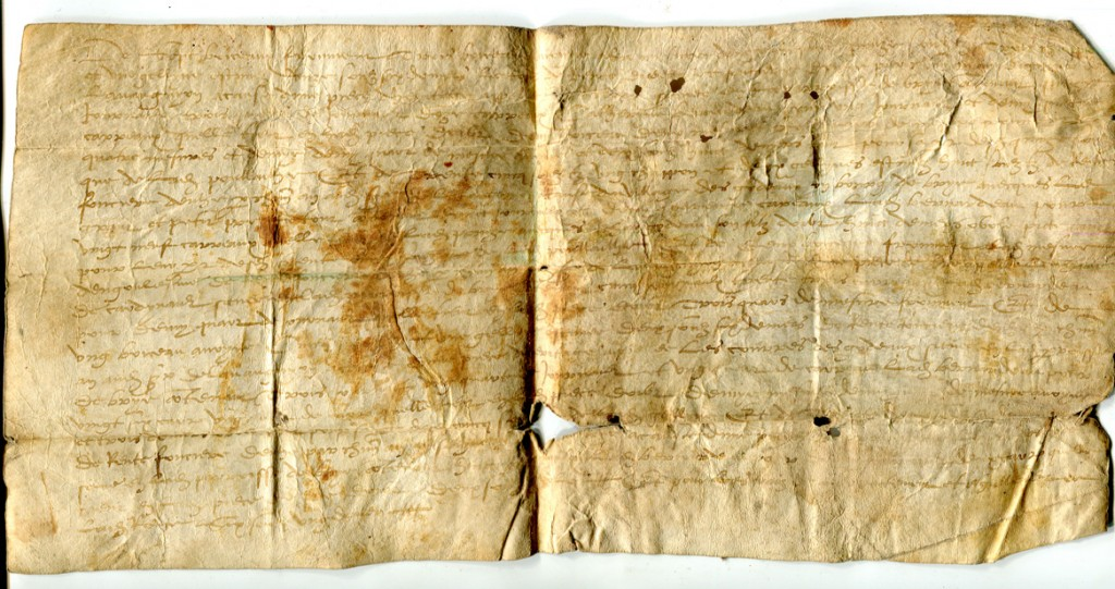 Single-sheet document in Latin on vellum, circa 1530s, listing rents for plots of land, from Brie in France. Private collection, reproduced by permission.