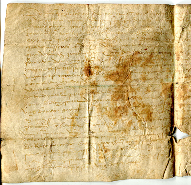 Left-hand half of face of Single-sheet document in Latin on vellum, circa 1530s, listing rents for plots of land, from Brie in France. Private collection, reproduced by permission.