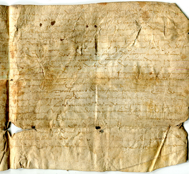 Right-hand half of face of Single-sheet document in Latin on vellum, circa 1530s, listing rents for plots of land, from Brie in France. Private collection, reproduced by permission.