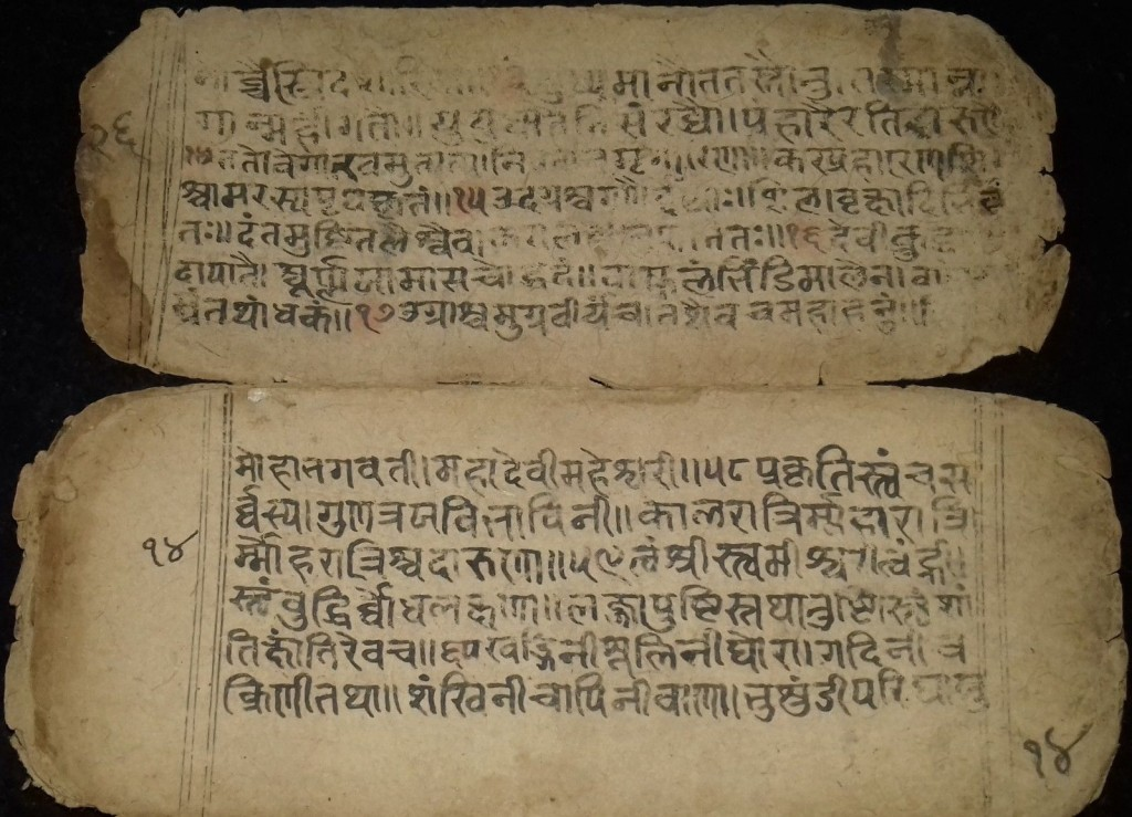 2.jpg = Fragment of a manuscript on paper in Sanskrit. Private Collection, purchased online in 2018.