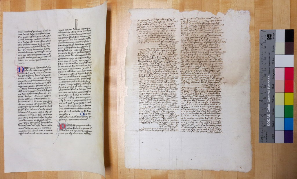 Private Collection, Rectos of Single Leaves from Ege MSS 41 and 51, with guide. Photography Mildred Budny.