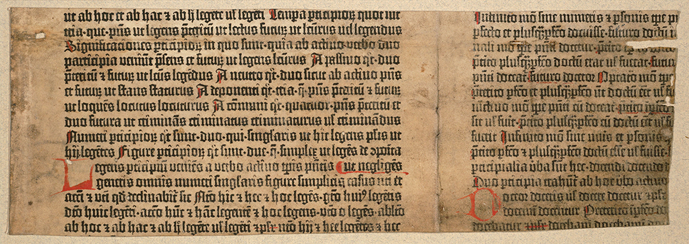 "Princeton University Library, Scheide Library. Donatus, ""Ars minor"" on vellum (Mainz: almost certainly Johann Gutenberg and Johann Fust, perhaps ca. 1453-54), fragment."