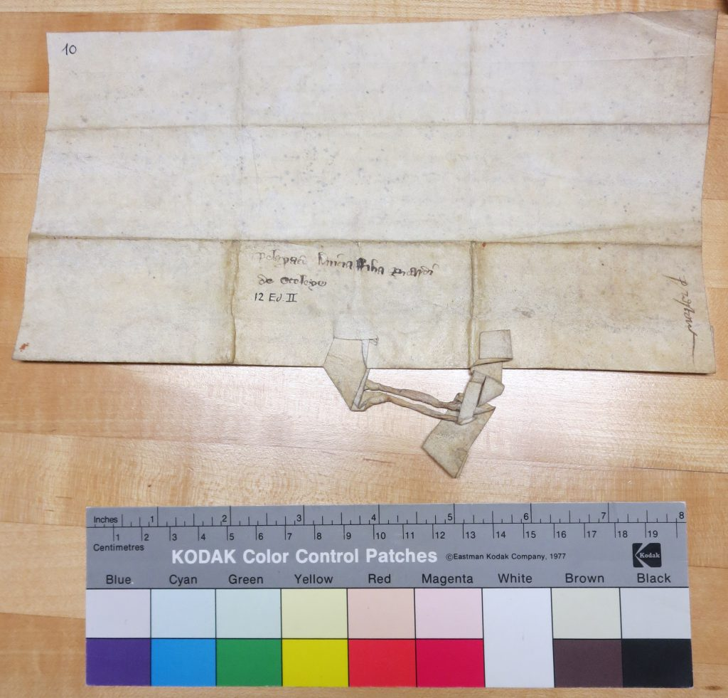 Preston Charter 10 Dorse. Photograph Mildred Budny.