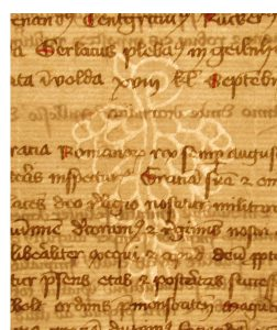 Grapes Watermark in a Selbold Cartulary Fragment.