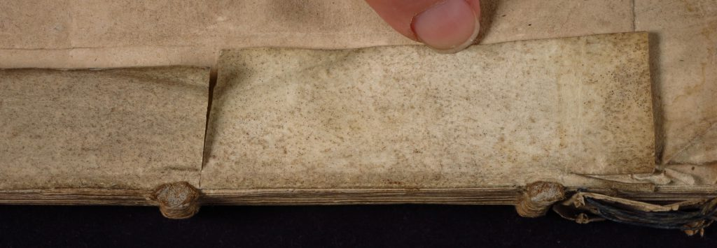 Smeltzer Collection, Henri de Suberville (1598), Vellum Supports, Strip 1 'Lower' Dorse.