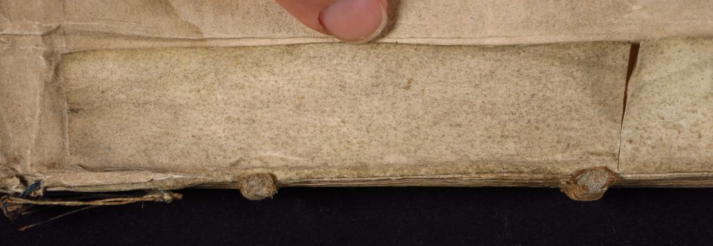 Smeltzer Collection, Henri de Suberville (1598), Vellum Supports, Strip 1 'Upper' Dorse.