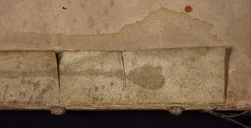 Smeltzer Collection, Henri de Suberville (1598), Vellum Supports. Strip 2 'Lower' Dorse.