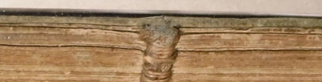 Smeltzer Collection, Henri de Suberville (1598), Spine: Front Midsection.