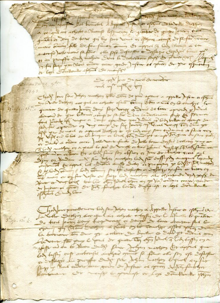 Private Collection, Single-Sheet Document recording 3 Land Purchases in Athis dated 1493 to 1509, Face.