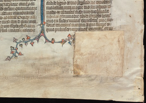 Beinecke Rare Book & Manuscript Library, Otto Ege Collection, MS 14, Genesis Opening Leaf: Verso, Detail of Patch.