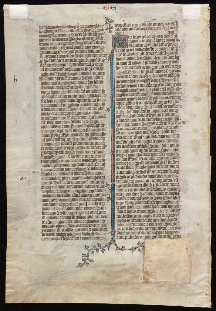 Beinecke Rare Book & Manuscript Library, Otto Ege Collection, MS 14, Genesis Opening Leaf: Verso.