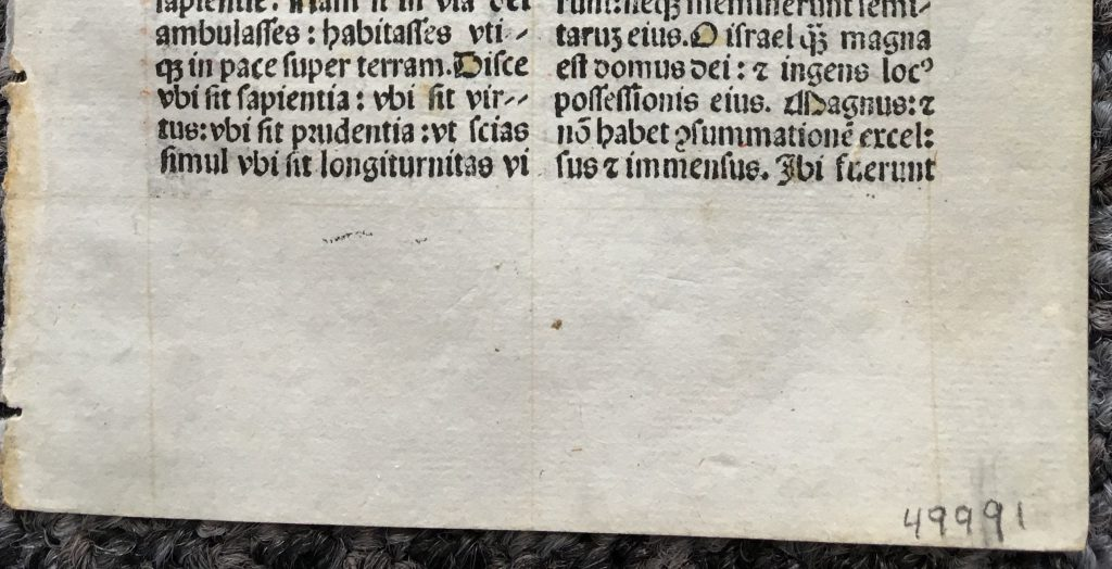 J. S. Wagner Collection, Single Leaf from a Latin Missal containing part of the Mass for Holy Saturday for use in a Carmelite Monastery, printed in 1509 by Lucantonio Giunta in Venice. Recto, detail: Bottom Portion. Reproduced by Permission.