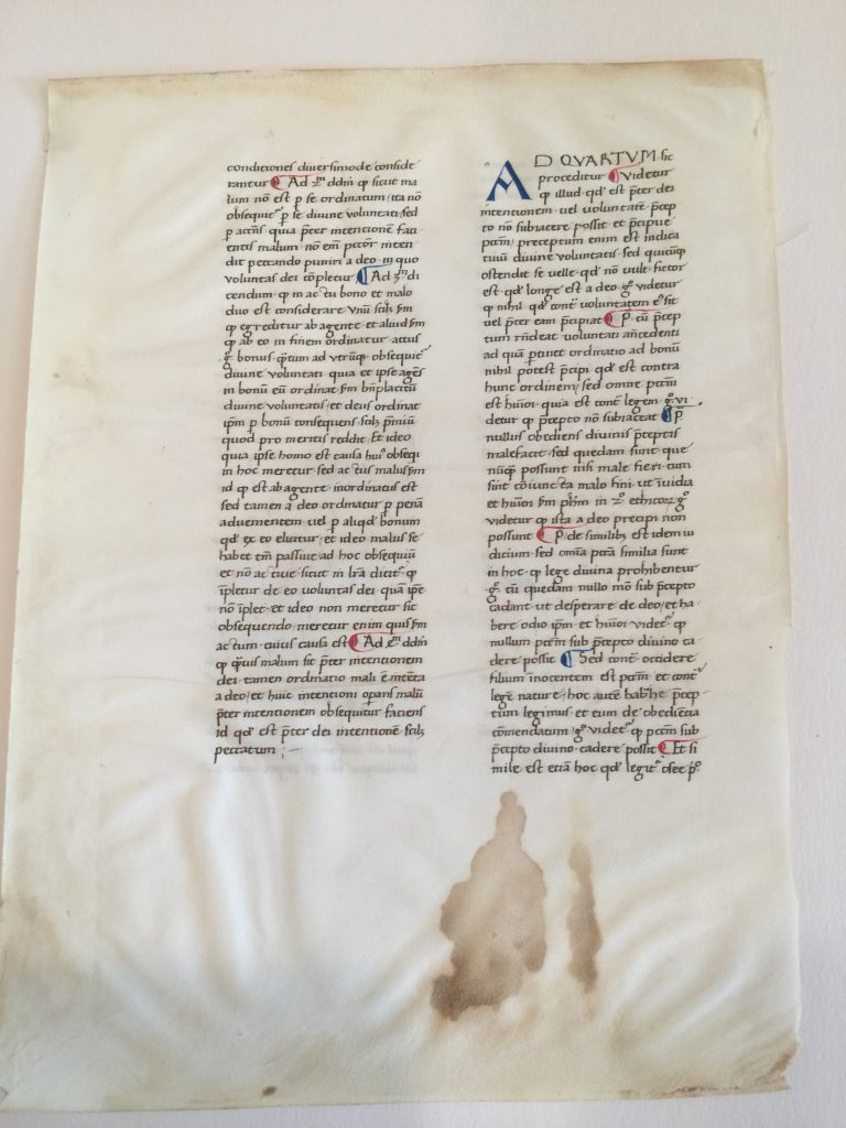 Private Collection, FBNC, Aquinas Leaf 'Front'. Reproduced by permission.