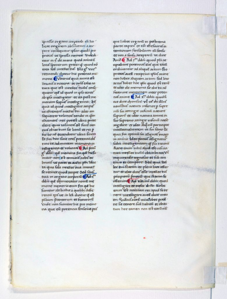 "Otto F. Ege: Fifty Original Leaves from Medieval Manuscripts, Leaf 40, ""Verso"", Special Collections and University Archives, Stony Brook University Libraries."