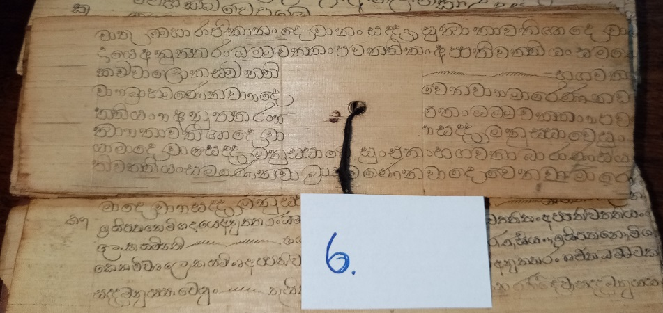 Private Collection, Sinhalese Palm-Leaf Manuscript, Leaf 6. Reproduced by Permission.