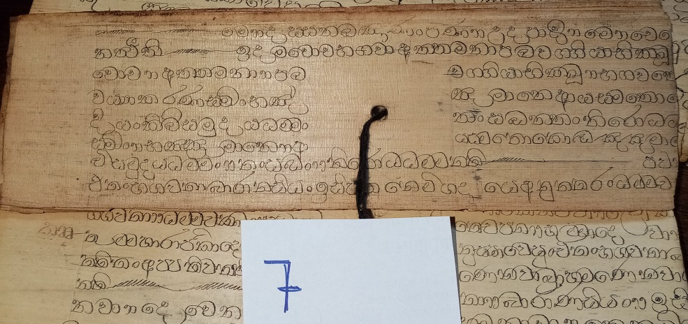 Private Collection, Sinhalese Palm-Leaf Manuscript, Leaf 7. Reproduced by Permission.