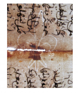 Fragment of a leaf in Ottoman Turkish, mid-15th century CE) on European paper, with a watermark of a fleur-de-lys (=Briquet no. 6914)
